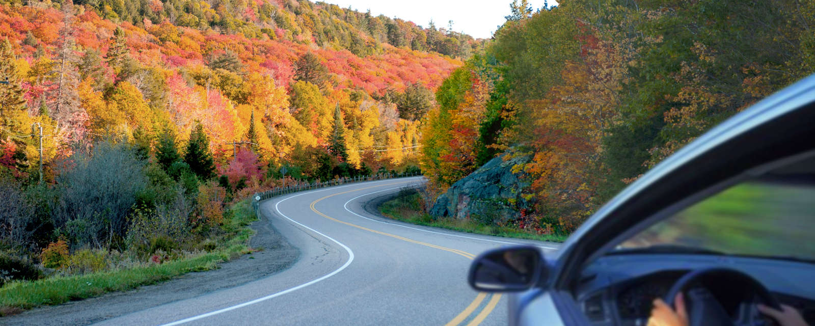 car driving along a winding road with colourful trees in background
