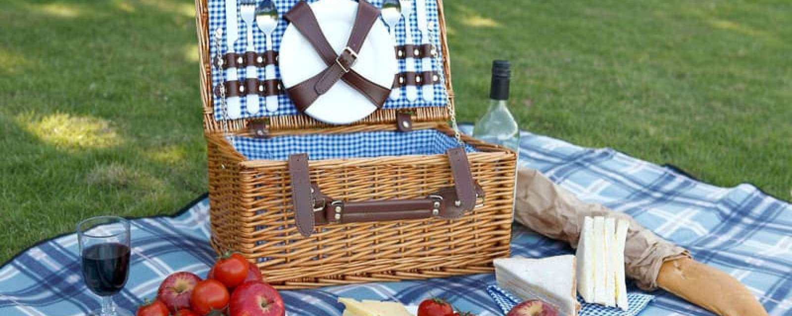 Group of Seven Picnic Lunches